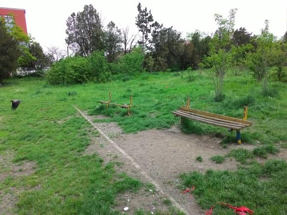 Parcul Feroviarilor... sau ce-a mai rămas din el :(